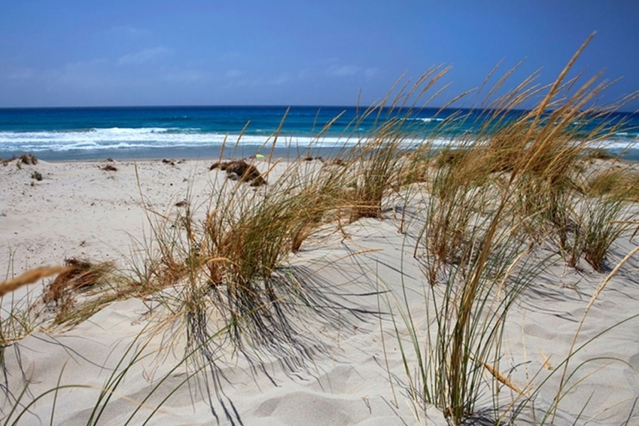 spiagge-vacanze-al-mare-in-Sardegna-Italia.jpg
